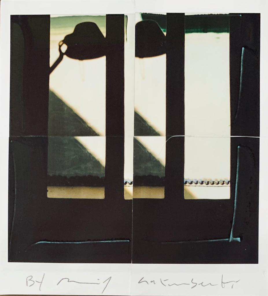 Fotografie solidali di Maurizio Galimberti CV ... a casa ... con lo sguardo ed i sogni dentro la casa ... n°14
