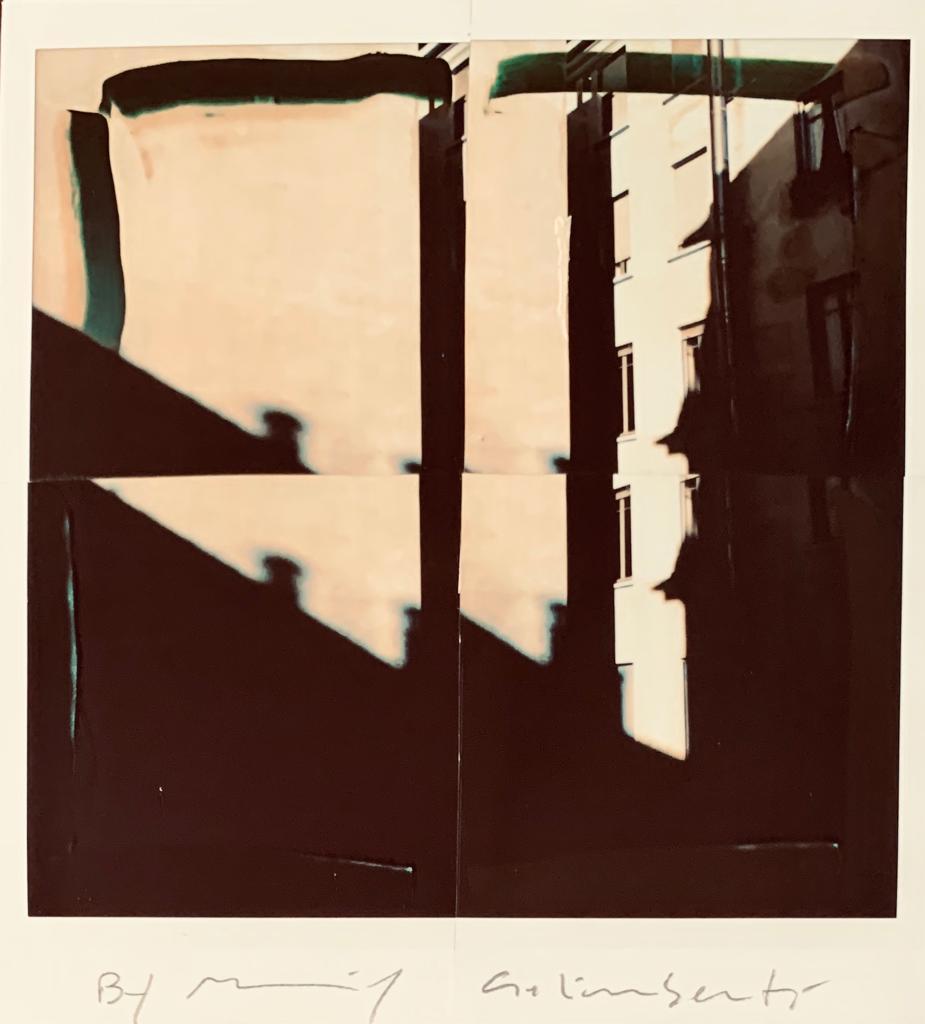 Fotografie solidali di Maurizio Galimberti CV ... a casa ... con lo sguardo ed i sogni dentro la casa ... n°15