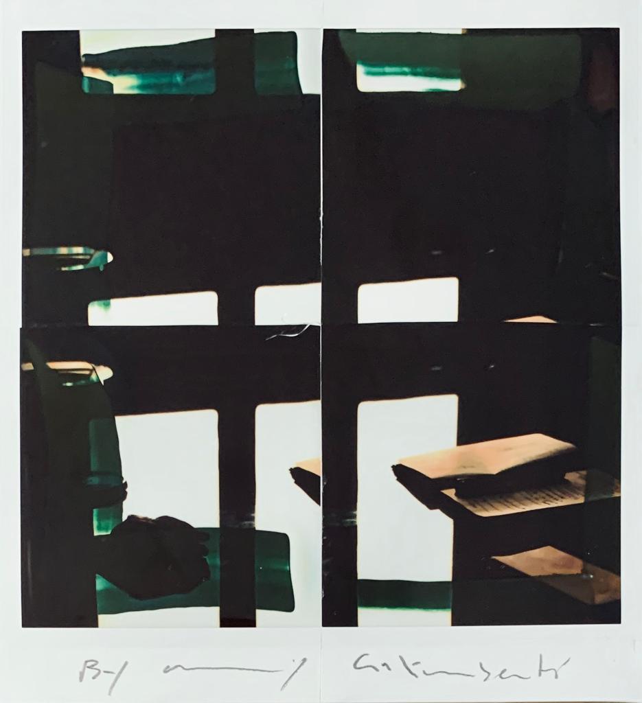 Fotografie solidali di Maurizio Galimberti CV ... a casa ... con lo sguardo ed i sogni dentro la casa ... n°17